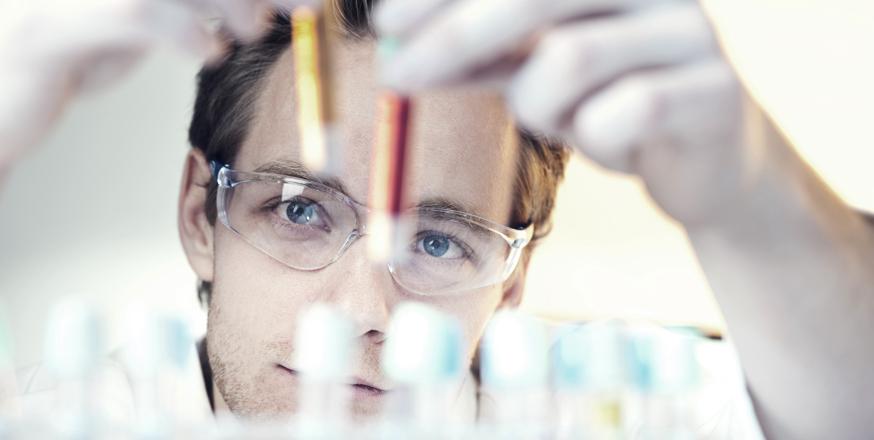 Onderwijs en wetenschap